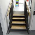 Chemistry Teaching Lab - Lifts - (4 of 7) - Flexstep lift