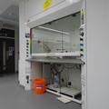 Chemistry Teaching Lab - Teaching Labs - (3 of 11) - Basement adjustable fume cupboard