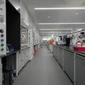 Chemistry Teaching Lab - Teaching Labs - (5 of 11) - Basement lab space