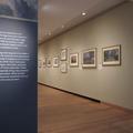 Ashmolean Museum - Exhibition spaces - (2 of 2)