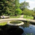 Botanic Garden - Gardens borders and outdoor areas - (5 of 5)