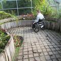Botanic Garden - Gardens, Glasshouses - (3 of 5) - Carnivorous Plant House