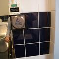 Ewert House - Accessible Toilets - (4 of 4)