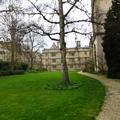 Exeter - Gardens - (3 of 6) - Fellows Garden