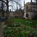 Exeter - Gardens - (4 of 6) - Terrace - Fellows Garden