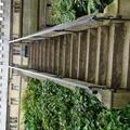 Exeter - Gardens - (5 of 6) - Terrace Steps - Fellows Garden