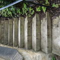Exeter - Stairs - (4 of 10) - Fellows Garden
