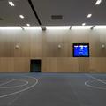 Iffley Road Sports - Sports halls - (1 of 3)
