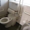 Inorganic Chemistry - Accessible Toilets - (1 of 1)