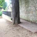 Merton College - Gardens - (2 of 5)