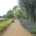 Merton College - Gardens - (5 of 5)
