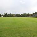 Merton College - Sports - (4 of 5)