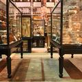 Pitt Rivers Museum - Galleries - (2 of 4)