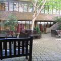 Wellington Square (1 - 7) (Rewley House) - Garden - (4 of 5)
