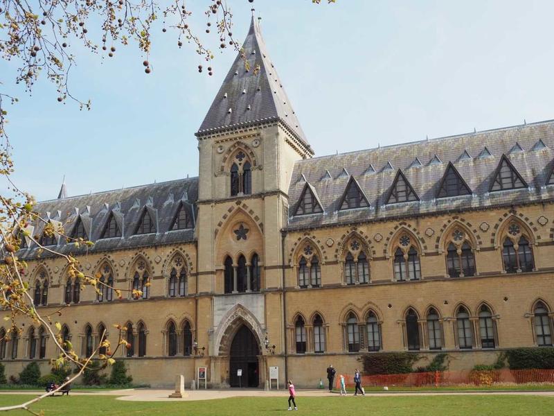 University Museum - (1 of 1)